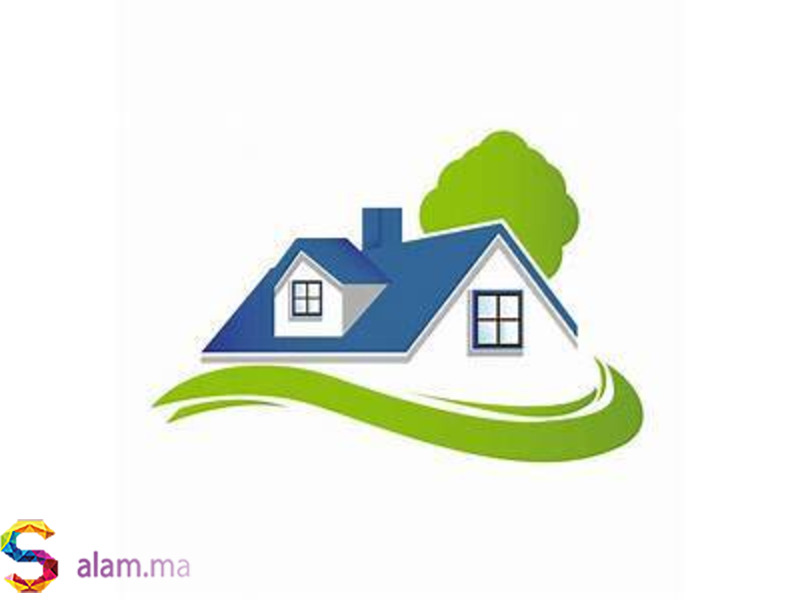 Agent Immobilier - 1
