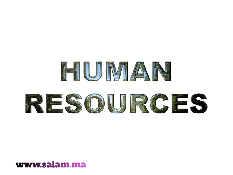 Assistant (e) Ressources Humaines - 2