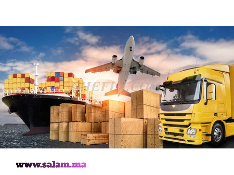 Transports Bagages - 2